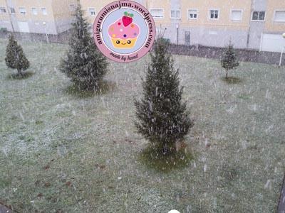 nieve camponaraya enero