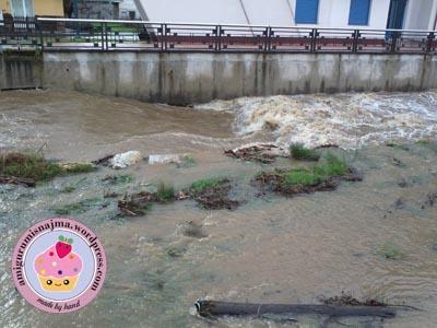 rio naraya camponaraya