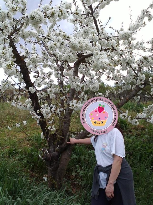 najma spring time
