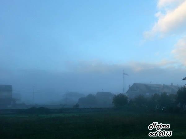 niebla otoño fall autumn fog